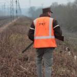 La SNCF chasse les lapins aux abords des voies