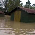 Photo de la Saligue aux Oiseaux d'Orthez sous les eaux après une inondation