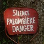 Le silence est roi à l'approche des palombières