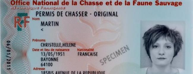 Photo spécimen d'un permis de chasse