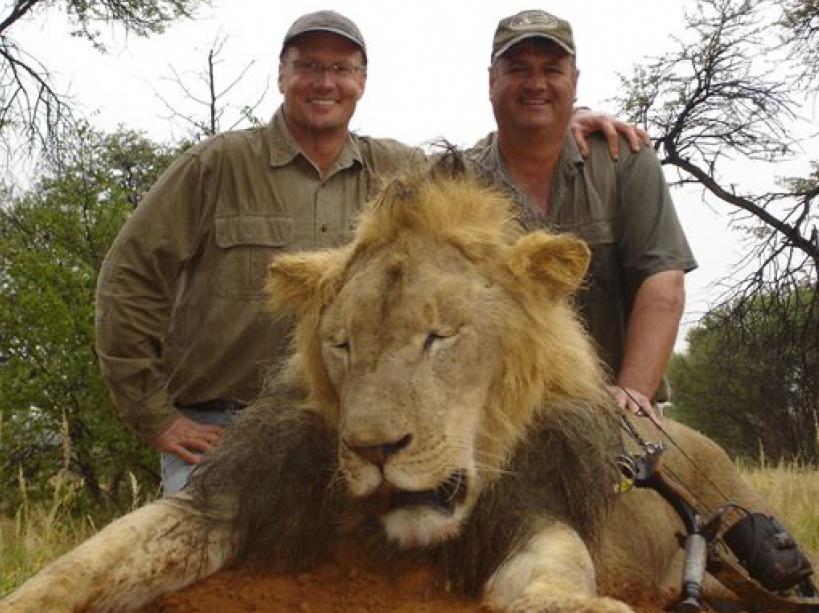 Mort du lion cecil