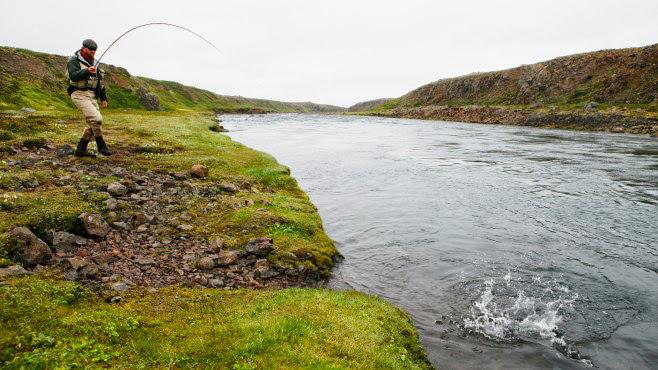 Pêcheur sur rivière en Islande
