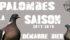 Débuts prometteurs pour la saison 2017 2018 de chasse à la palombe à l'affût