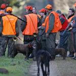 Des chasseurs en battue se regroupent