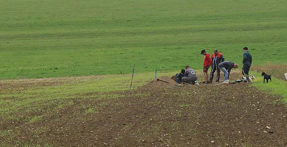 Une équipe de déterreurs dans un champ
