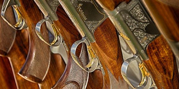 Que change le decret sur les armes à feu 2018