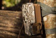Caméras de chasse à piège photographique : comment choisir ?