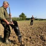 La relation entre un chasseur et son chien